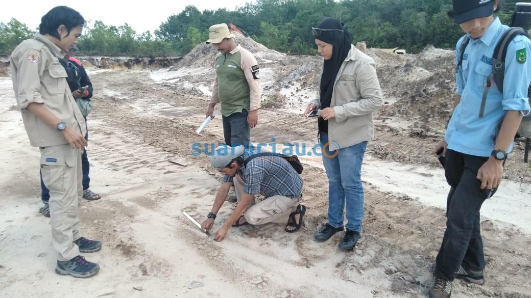 Petugas melakukan identifikasi di lokasi temuan jejak harimau.