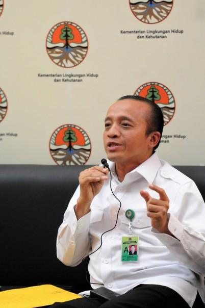 Ketua Presidium Dewan Kehutanan Nasional (DKN), Bambang Hendroyono. (Ist)