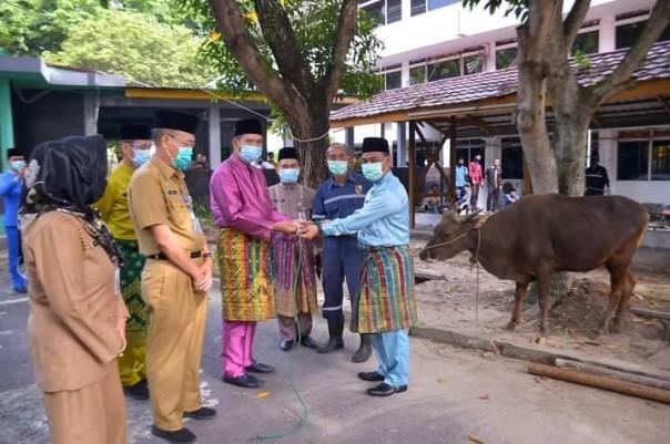 Walikota Pekanbaru Dr Firdaus MT menyerahkan hewan kurban/ADV