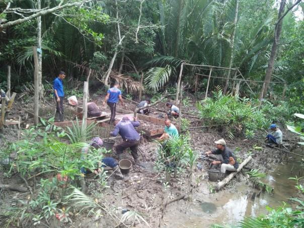 Kelompok masyarakat mulai melalui kegiatan program padat karya mangrove di Riau. (Ist)