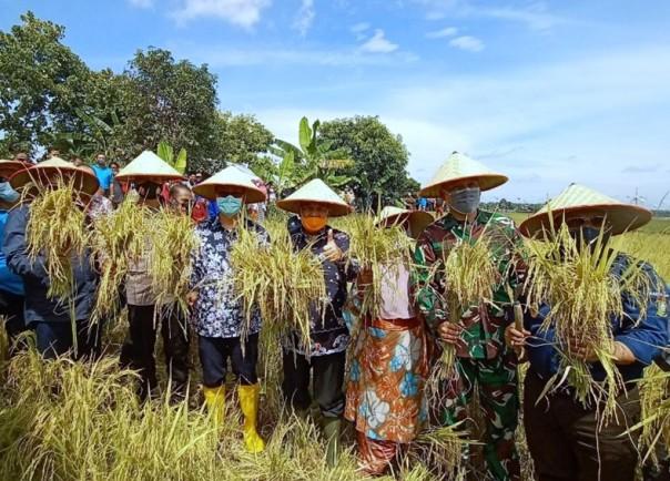 Wakil Gubernur Riau Edy Natar Nasution (keempat dari kiri) ketika hadir dalam kegiatan panen raya di Desa Petapahan, Tapung, Kampar.
