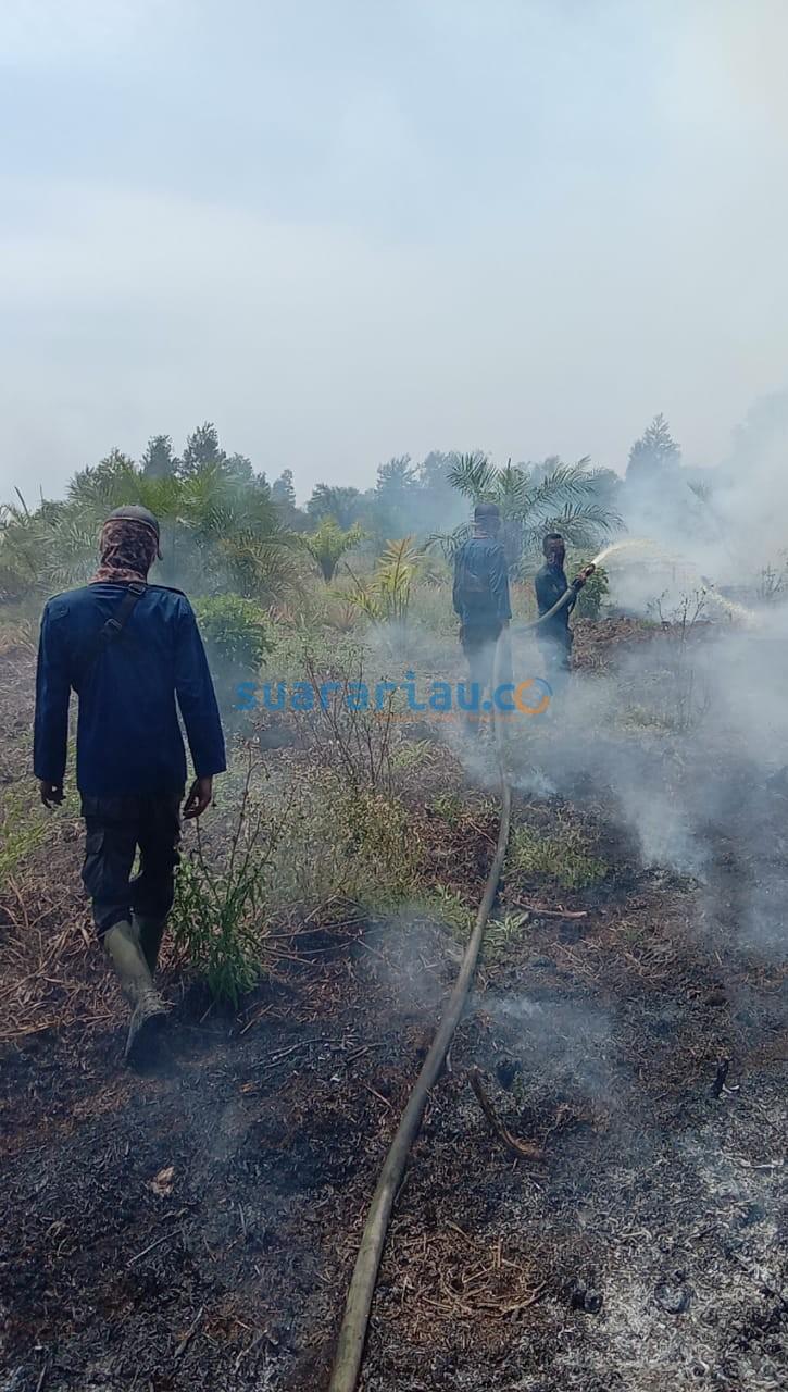 Tim Damker BPBD Siak memadamkan api yang mengganas di lahan Gambut, Kampung Bunsur Kecamatan Sungai Apit